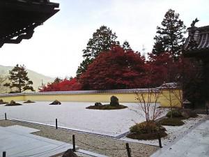 蓮花寺秋風景